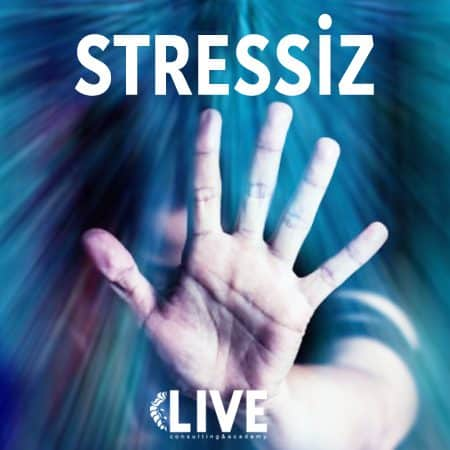 STRESSİZ